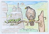 "Aus-Mal-Postkarte ""Brosinnadel mit Falke"""