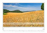 07-Juli-Traumlandschaft-Elbsandstein-2015-Tafelberg-Koenigstein-Kornfeld.jpg